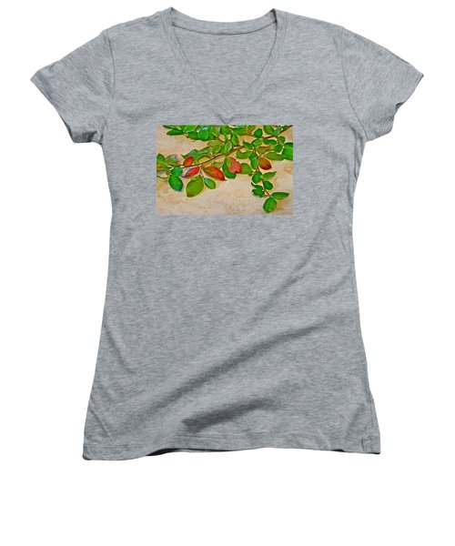 Women's V-Neck T-Shirt (Junior Cut) featuring the photograph Summer Leaves by Johanna Bruwer