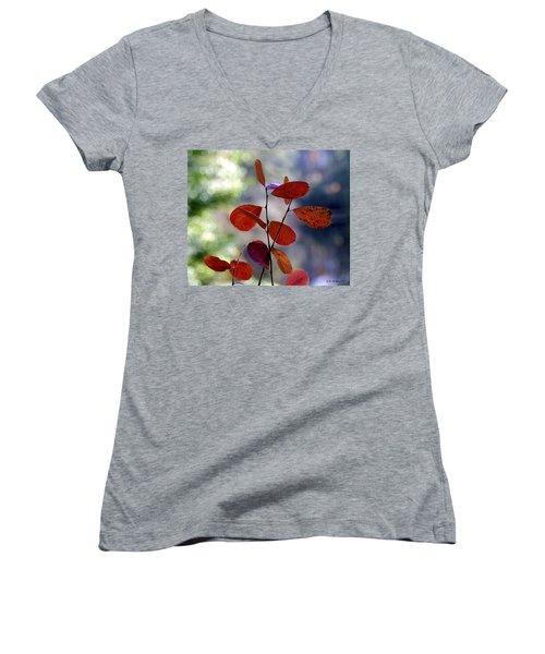 Summer's End Women's V-Neck T-Shirt (Junior Cut) by Brian Wallace