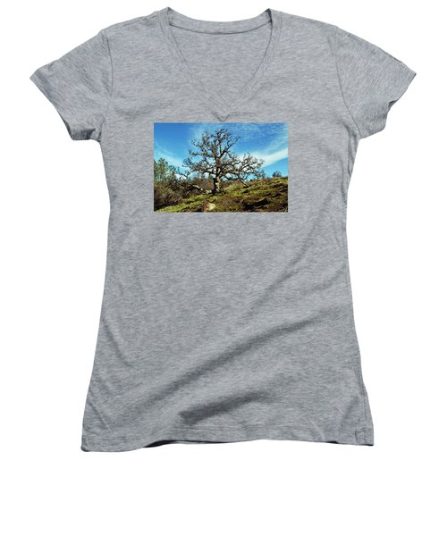 Summit Of Monkey Face Women's V-Neck T-Shirt (Junior Cut) by Holly Blunkall