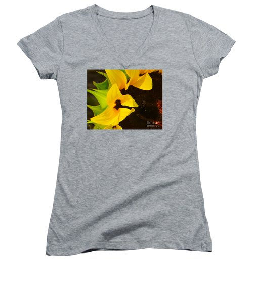 Women's V-Neck T-Shirt (Junior Cut) featuring the photograph Sun Worshipper by Joy Hardee
