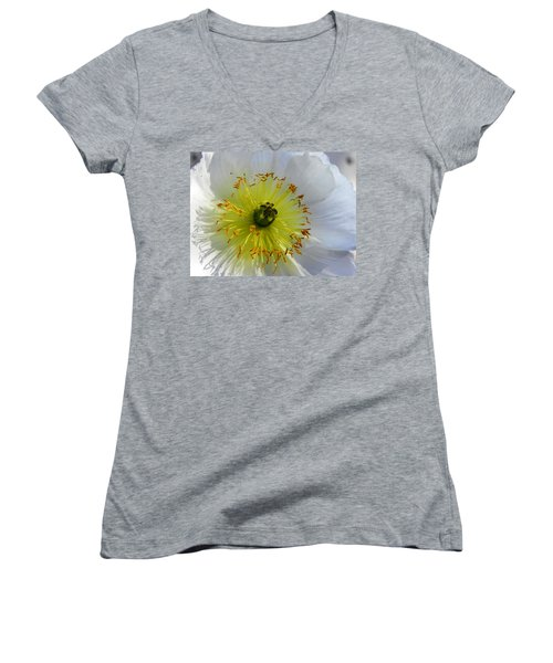 Women's V-Neck T-Shirt (Junior Cut) featuring the photograph Sunburst by Deb Halloran