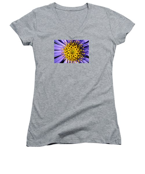 Sunburst Women's V-Neck T-Shirt (Junior Cut) by Wendy Wilton