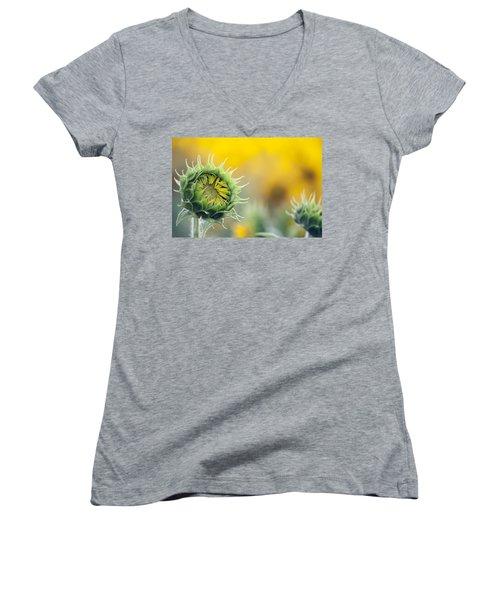 Sunflower Bloom Women's V-Neck T-Shirt