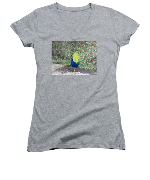 Women's V-Neck T-Shirt (Junior Cut) featuring the photograph Sunny Peancock by Caryl J Bohn