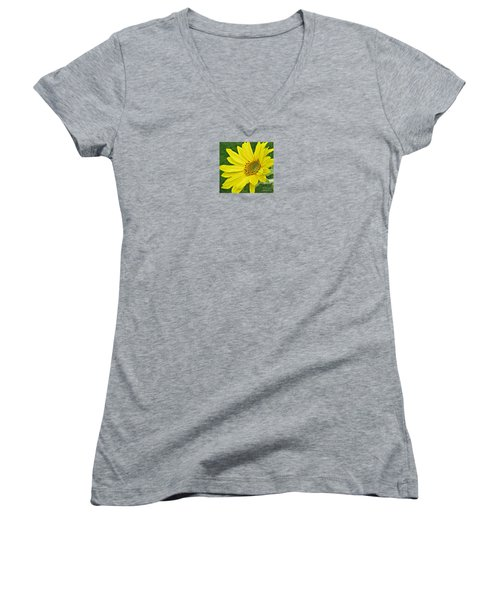 Sunny Side Up Women's V-Neck T-Shirt (Junior Cut) by Janice Westerberg