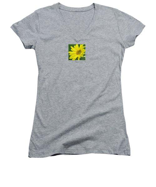 Sunny Side Up Women's V-Neck T-Shirt