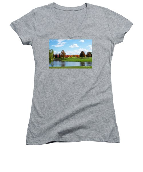 Sunshine On A Country Estate Women's V-Neck T-Shirt (Junior Cut) by Barbara McMahon
