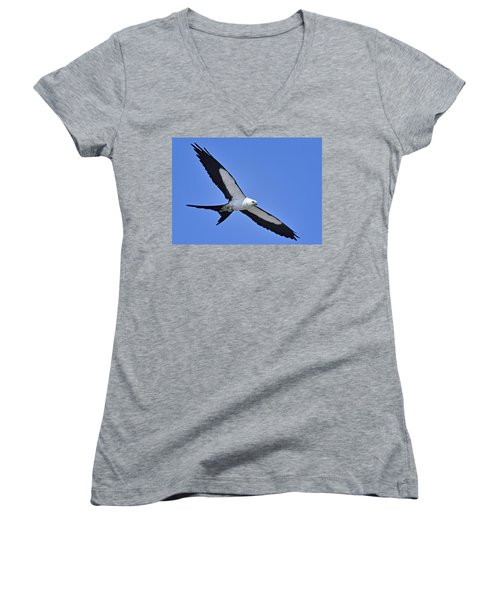 Swallow-tailed Kite Women's V-Neck T-Shirt