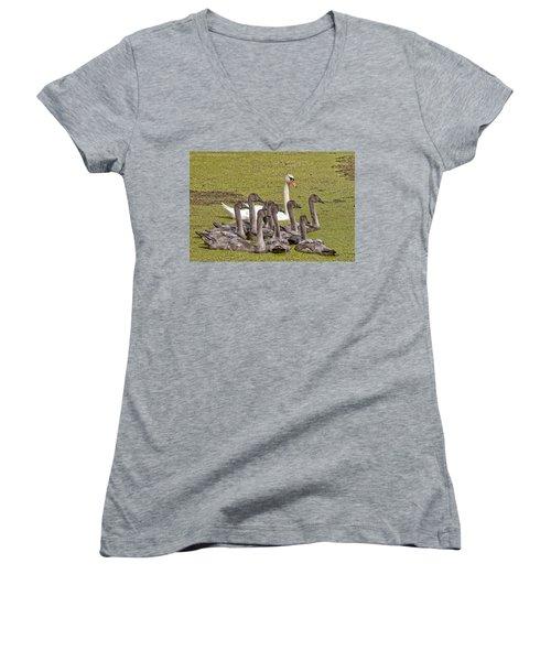 Swans Family Women's V-Neck T-Shirt