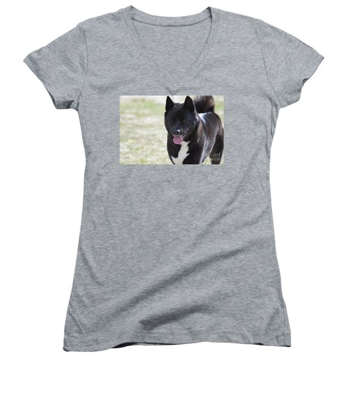 Sweet Akita Dog Women's V-Neck (Athletic Fit)