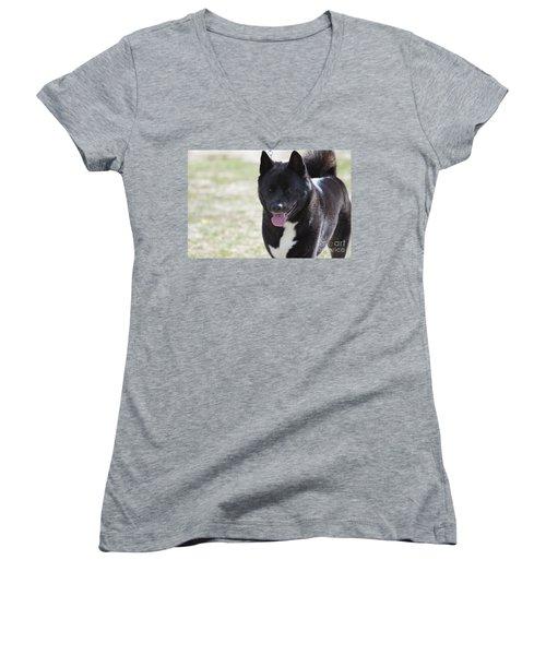Sweet Akita Dog Women's V-Neck T-Shirt (Junior Cut) by DejaVu Designs