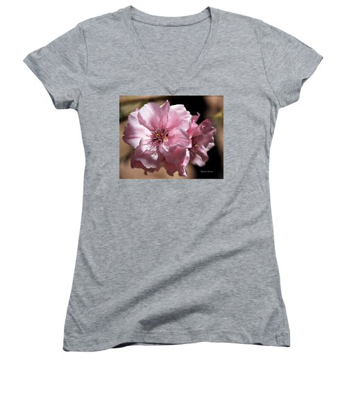 Sweet Blossoms Women's V-Neck (Athletic Fit)