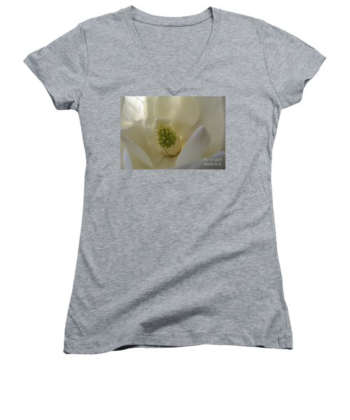 Sweet Magnolia Women's V-Neck T-Shirt (Junior Cut) by Peggy Hughes