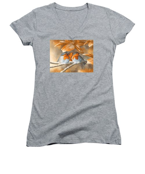 Sweet Nature Women's V-Neck (Athletic Fit)
