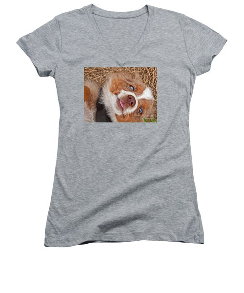 Sweet Australian Shepherd Puppy Face Art Prints Women's V-Neck T-Shirt (Junior Cut) by Valerie Garner