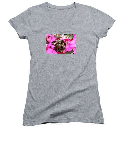 Tailed Jay Butterfly #4 Women's V-Neck (Athletic Fit)