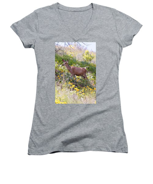 Taking A Stroll In The Country Women's V-Neck T-Shirt (Junior Cut) by Athena Mckinzie
