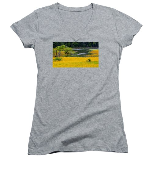 Tennessee Black-eyed Susan Field Women's V-Neck T-Shirt (Junior Cut) by Kathy Barney