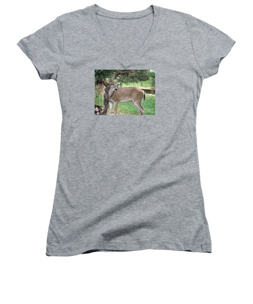 Women's V-Neck T-Shirt (Junior Cut) featuring the photograph Texas Beauty - White Tail Doe by Ella Kaye Dickey