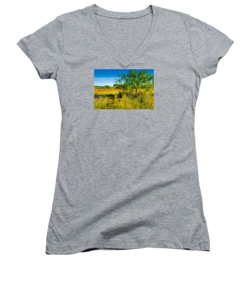 Texas Hill Country Wildflowers Women's V-Neck T-Shirt