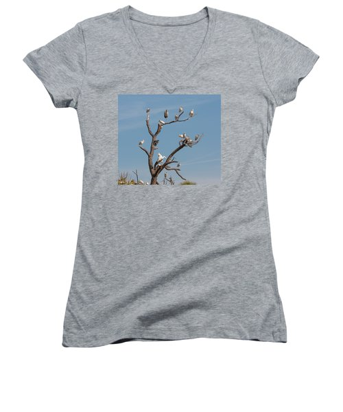 Women's V-Neck T-Shirt (Junior Cut) featuring the photograph The Bird Tree by John M Bailey
