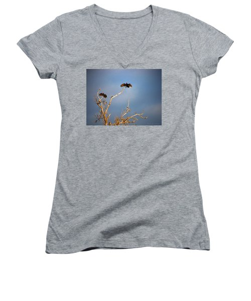 The Buzzard Roost Women's V-Neck T-Shirt (Junior Cut) by Joyce Dickens