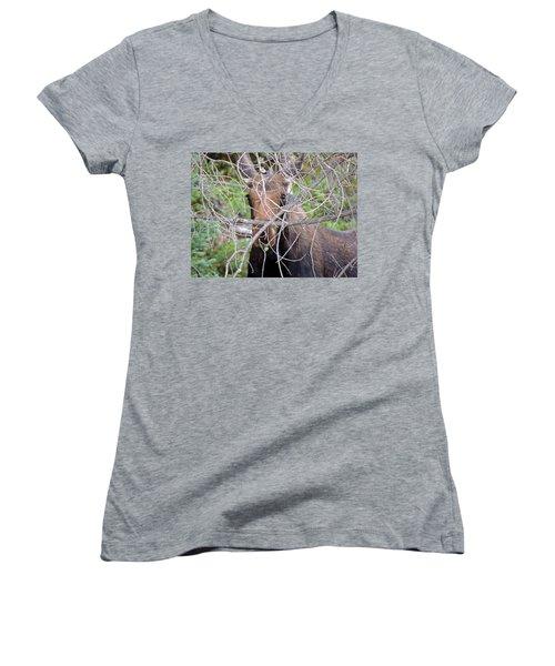 Women's V-Neck T-Shirt (Junior Cut) featuring the photograph The Calf by Lynn Sprowl