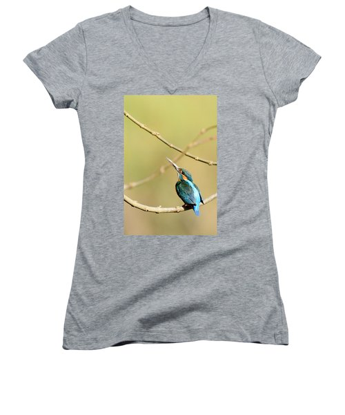 The Common Kingfisher Women's V-Neck T-Shirt (Junior Cut) by Fotosas Photography