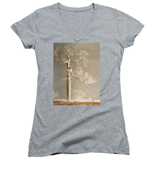 The Dreaming Tree Women's V-Neck T-Shirt (Junior Cut) by Holly Kempe