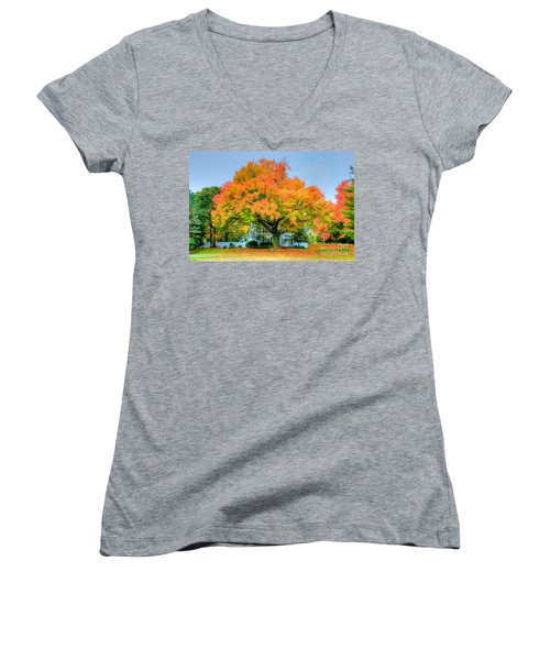 Women's V-Neck T-Shirt (Junior Cut) featuring the photograph The Family Tree In Autumn by Robert Pearson