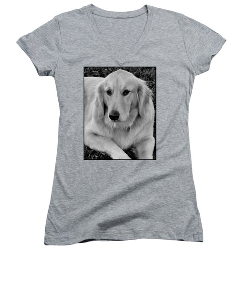 The Golden Retriever Women's V-Neck T-Shirt (Junior Cut) by James C Thomas