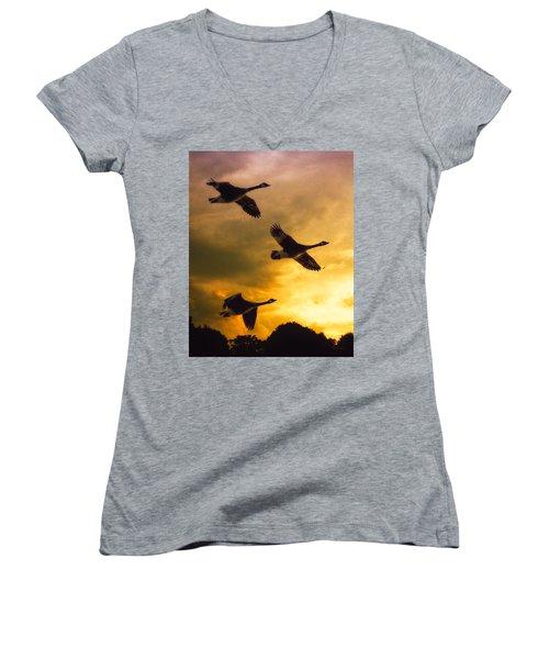 The Journey South Women's V-Neck T-Shirt