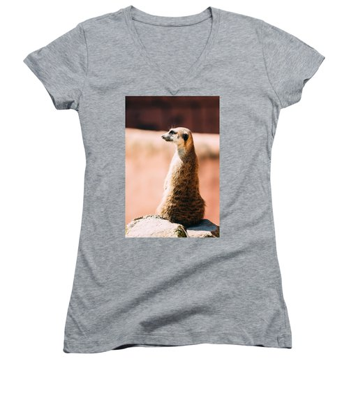 The Lonely Meerkat Women's V-Neck T-Shirt (Junior Cut) by Pati Photography