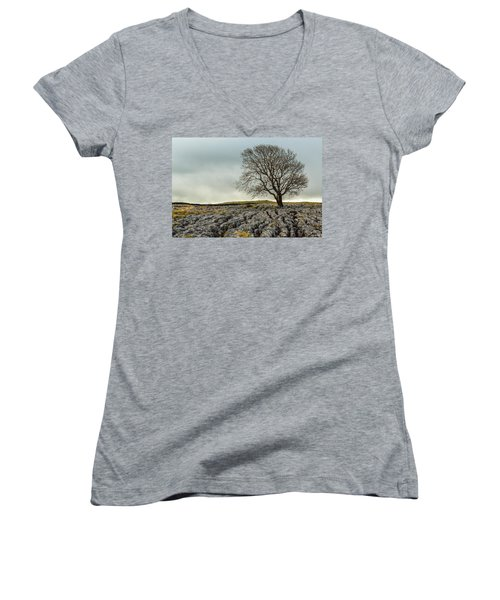 The Lonely Tree Women's V-Neck