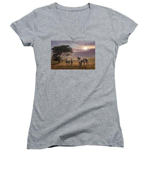 The Mane Event Women's V-Neck T-Shirt