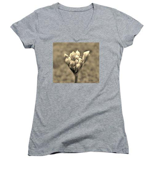 The Offering Women's V-Neck T-Shirt (Junior Cut) by Robert Geary