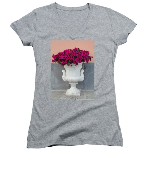 Women's V-Neck T-Shirt (Junior Cut) featuring the photograph The Planter by Natalie Ortiz