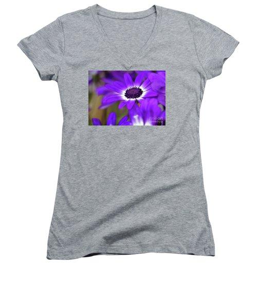 The Purple Daisy Women's V-Neck