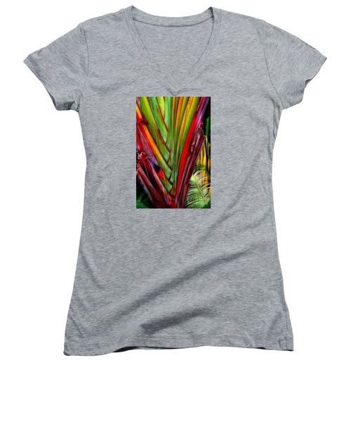The Red Jungle Women's V-Neck T-Shirt (Junior Cut) by Joseph J Stevens