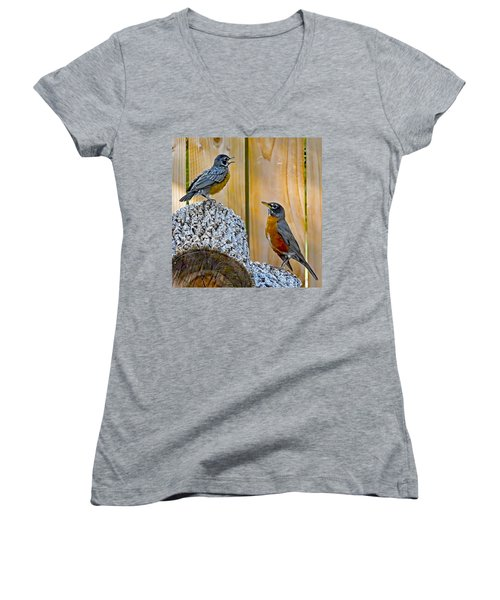 The Voice Lesson Women's V-Neck T-Shirt