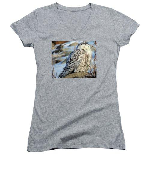 The Watcher Women's V-Neck T-Shirt (Junior Cut) by Marcia Lee Jones
