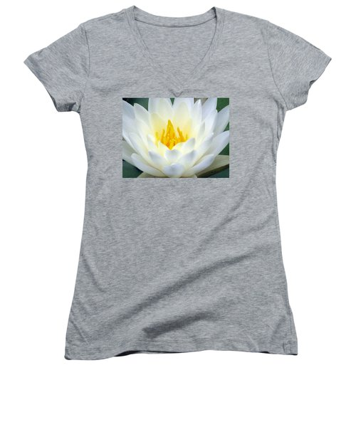 Women's V-Neck T-Shirt (Junior Cut) featuring the photograph The Water Lilies Collection - 05 by Pamela Critchlow