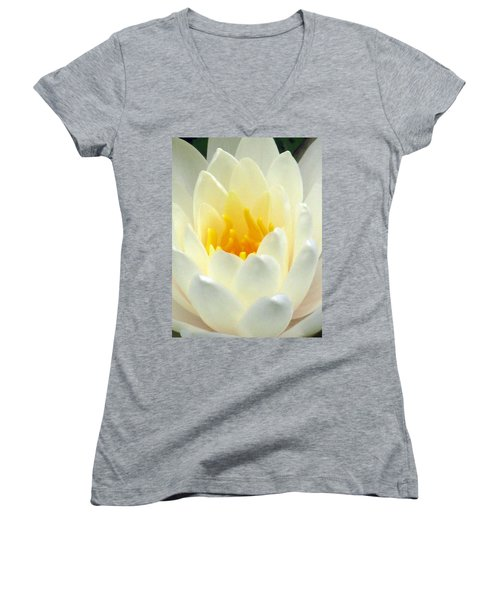 Women's V-Neck T-Shirt (Junior Cut) featuring the photograph The Water Lilies Collection - 10 by Pamela Critchlow