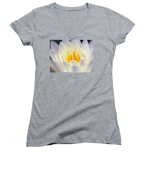 Women's V-Neck T-Shirt (Junior Cut) featuring the photograph The Water Lilies Collection - 11 by Pamela Critchlow