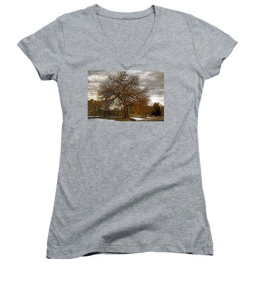 The Welcome Tree Women's V-Neck (Athletic Fit)