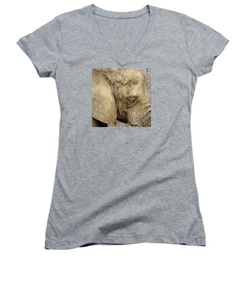 The Wise Old Elephant Women's V-Neck T-Shirt (Junior Cut) by Nikki McInnes
