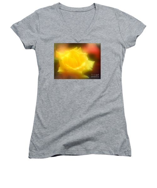 Women's V-Neck T-Shirt (Junior Cut) featuring the photograph New Orleans  Yellow Rose Of Tralee by Michael Hoard