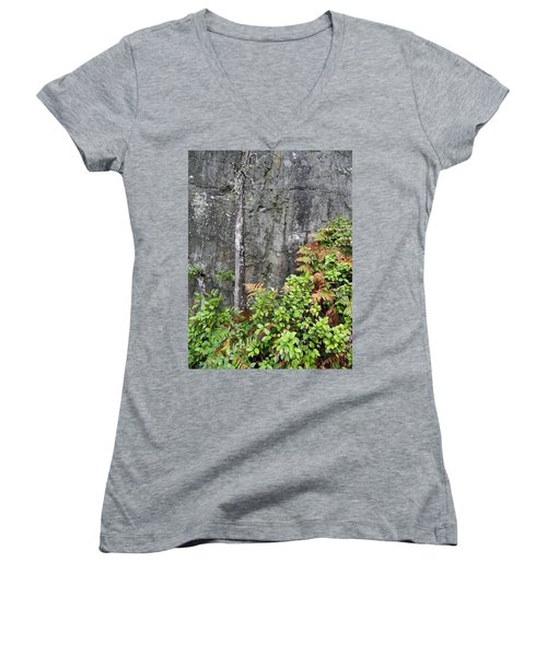 Women's V-Neck T-Shirt (Junior Cut) featuring the photograph Thetis In Fall by Cheryl Hoyle