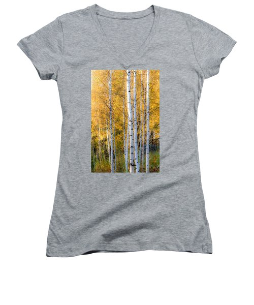Thin Birches Women's V-Neck T-Shirt