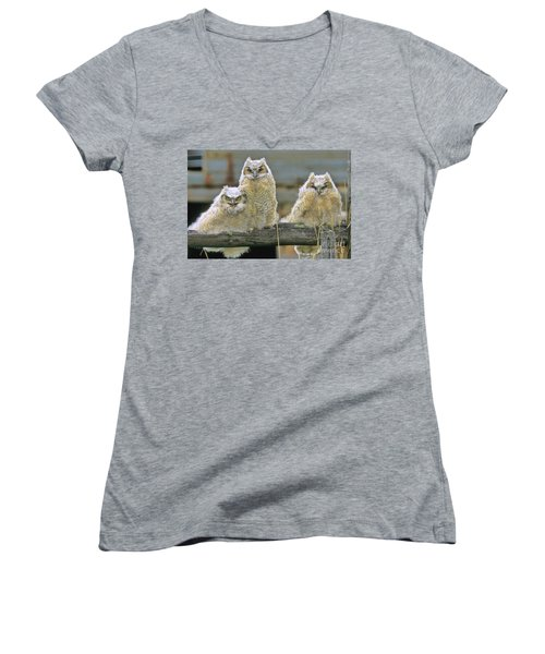 Three Great-horned Owl Chicks Women's V-Neck (Athletic Fit)